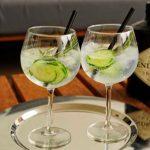 Hendricks-gin-tonic Glass